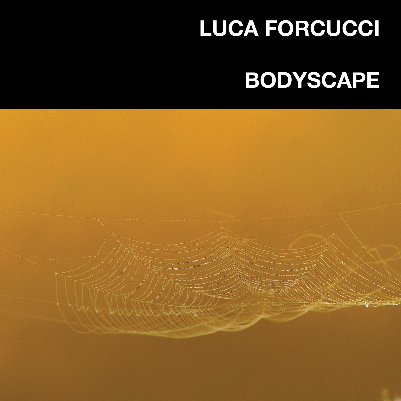 Luca Forcucci Bodyscape album